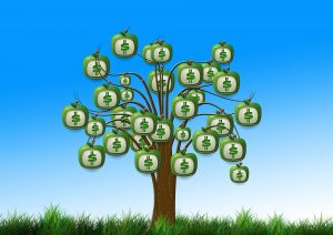 money growing on a tree - private money lenders