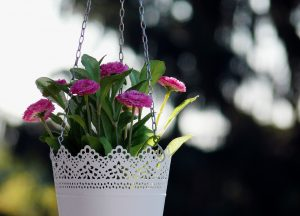 white vintage hanging flower pot with pink flowers - FHA Loans