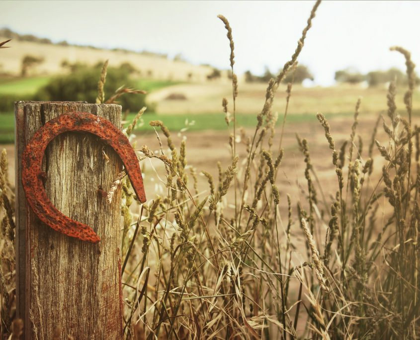 horseshoe in a field - investment property loans